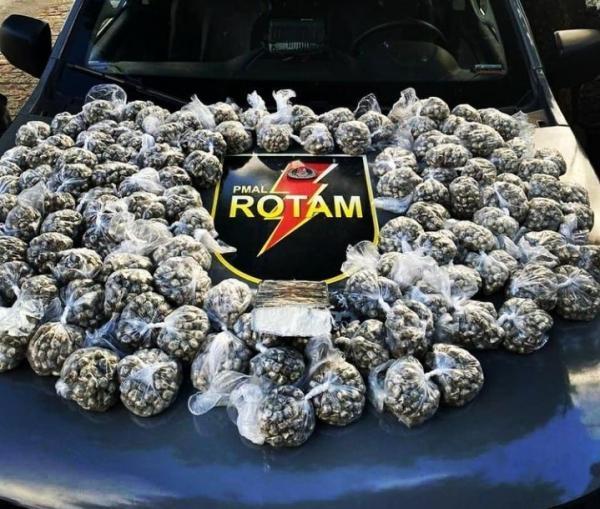 Polícia apreende 12 quilos de maconha em Maceió