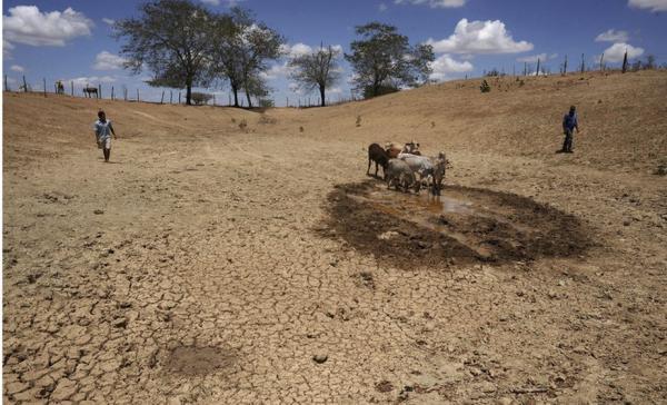 ONU: seca poderá ser a próxima pandemia